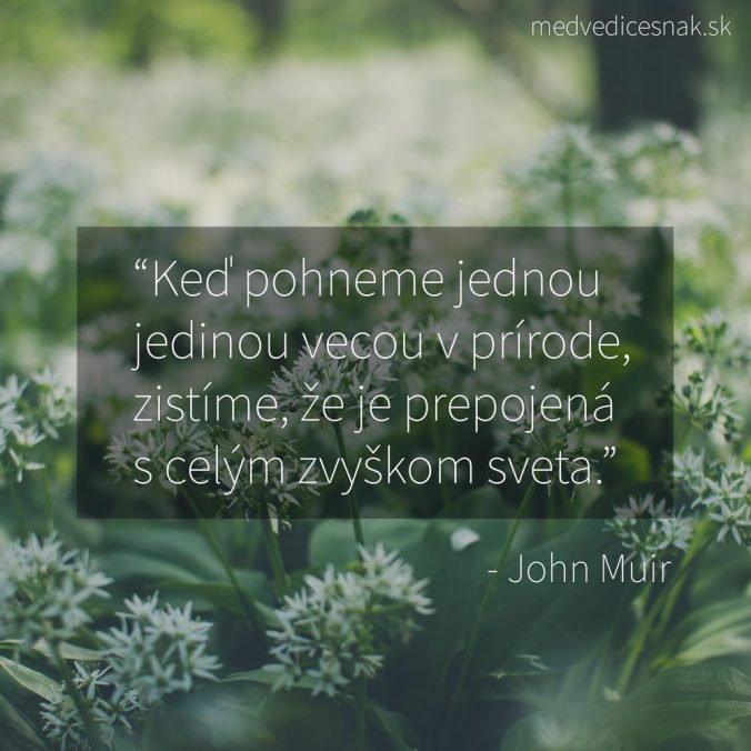 John Muir citát o prírode