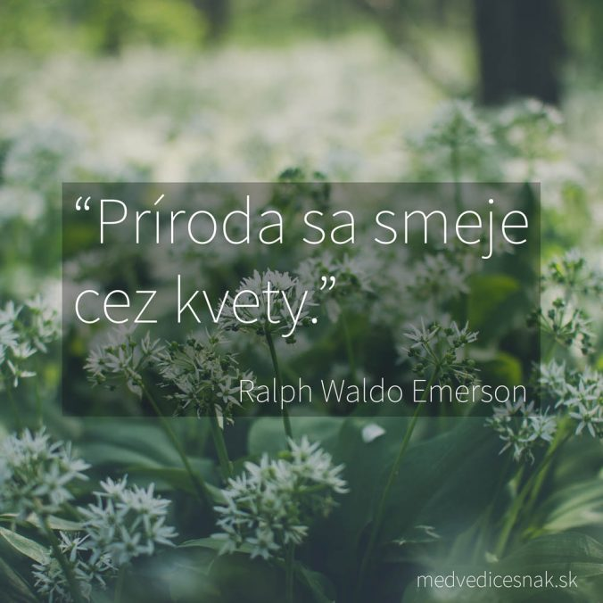 Príroda sa smeje cez kvety